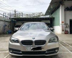 Cần bán lại xe BMW 520i đời 2015, nhập khẩu nguyên chiếc, chính chủ giá 1 tỷ 300 tr tại Tp.HCM