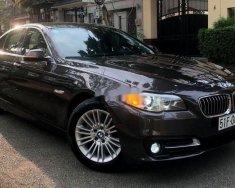 Cần bán gấp BMW 5 Series 520i sản xuất 2014, nhập khẩu nguyên chiếc giá 1 tỷ 295 tr tại Tp.HCM