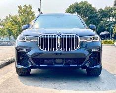 Cần bán BMW  X7 xDrive40i 2019, màu xám, nhập khẩu giá 7 tỷ 100 tr tại Hà Nội