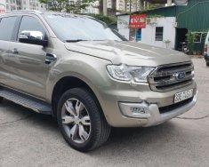 Bán Ford Everest Titanium 2.2L 4x2 AT 2016, màu bạc, nhập khẩu   giá 955 triệu tại Hà Nội