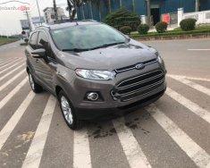 Cần bán lại xe Ford EcoSport 1.5L AT đời 2017, màu nâu, số tự động giá 510 triệu tại Vĩnh Phúc