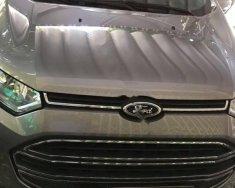 Bán Ford EcoSport Titanium 1.5L AT 2014, màu xám, chính chủ giá 424 triệu tại Tp.HCM
