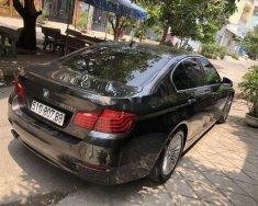 Bán BMW 5 Series năm sản xuất 2015, nhập khẩu giá 1 tỷ 250 tr tại Tp.HCM