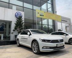 Volkswagen Passat Bluemotion-nhập khẩu nguyên chiếc  giá 1 tỷ 380 tr tại Quảng Ninh