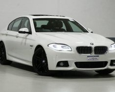 Bán ô tô BMW 520i 2015, màu trắng, nhập khẩu, 900 triệu giá 900 triệu tại Tp.HCM