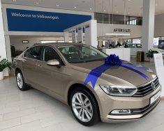Volkswagen Passat, nhập khẩu nguyên chiếc giá cạnh tranh giá 1 tỷ 166 tr tại Quảng Ninh