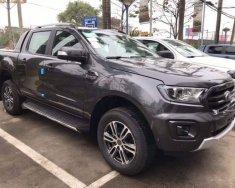 Bán xe Ford Ranger sản xuất năm 2020, màu xám, nhập khẩu   giá 900 triệu tại Tây Ninh
