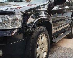 Chính chủ cần bán xe Ford escape 2005 giá 198 triệu tại Hà Nội
