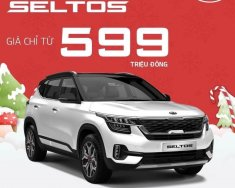 Bán xe Kia Seltos đời 2020, màu trắng, giá chỉ 599 triệu giá 599 triệu tại Hà Tĩnh