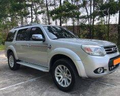 Nhà cần bán Ford Everest 2014, số sàn, máy dầu, màu xám giá 466 triệu tại Tp.HCM